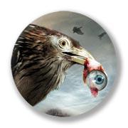 Большой значок по Flu Bird Horror