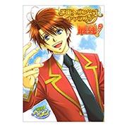 Портретный постер по Gakuen Heaven