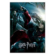 Портретный постер Harry Potter
