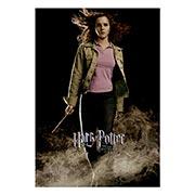 Портретный постер Harry Potter