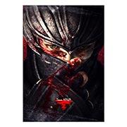 Портретный постер по Ninja Gaiden
