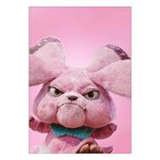 Портретный постер Pokemon