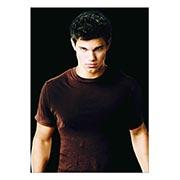 Портретный постер Twilight