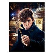 Панорамный постер Fantastic Beasts