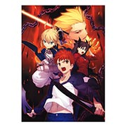 Панорамный постер по Fate/Stay Night
