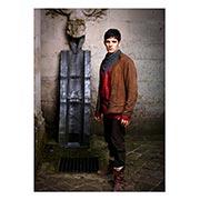 Панорамный постер Merlin
