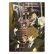 Панорамный постер по Kateikyo Hitman Reborn!