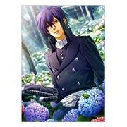 Панорамный постер Hakuoki: Shinsengumi Kitan