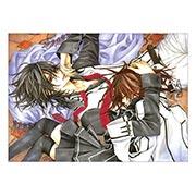 Панорамный постер по Vampire Knight