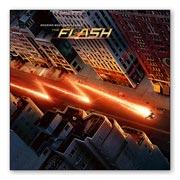 Магнит с металлическим отливом Flash