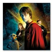 Гибкий магнит (большой) Harry Potter
