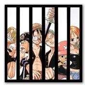 Гибкий магнит (большой) One Piece